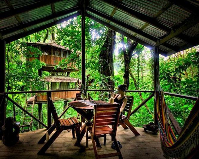 Дивовижне село з будинками на деревах (31 фото) (14)