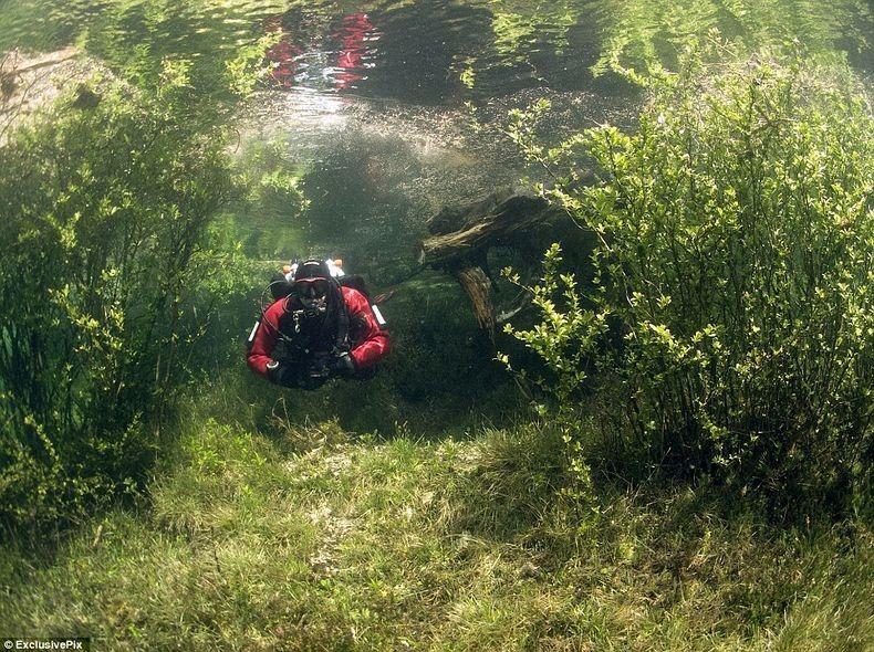 Грюнер Зее: Парк, який перетворюється на озеро (3)