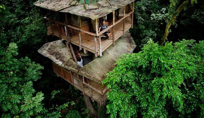 Дивовижне село з будинками на деревах (31 фото) (4)