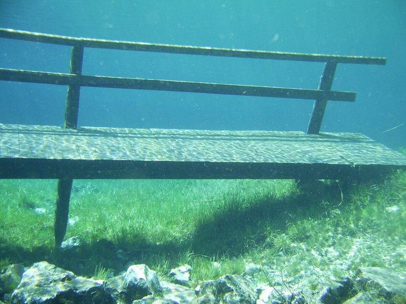 Грюнер Зее: Парк, який перетворюється на озеро (6)