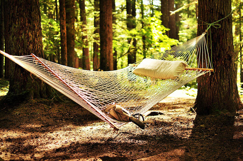 25 місць ідеальних для того, щоб полежати в гамаку (Оханапекош, гора Рейнір, Вашингтон, США.)