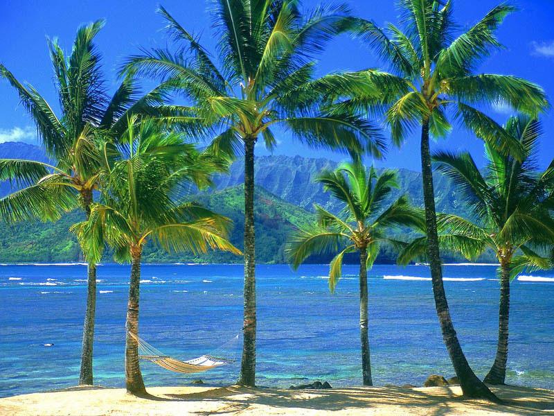 25 місць ідеальних для того, щоб полежати в гамаку (Кауаї, Гаваї. )