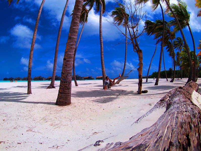 25 місць ідеальних для того, щоб полежати в гамаку (Мальдіви. )