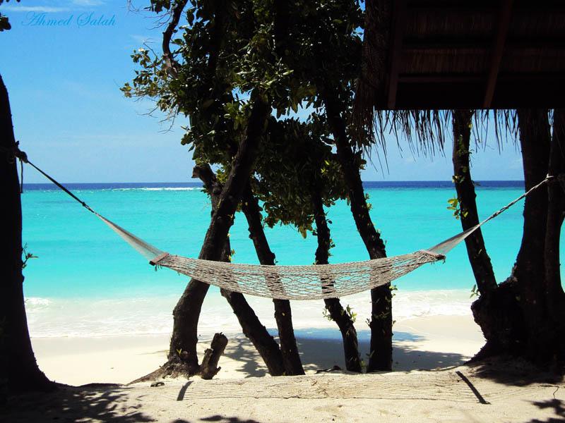 25 місць ідеальних для того, щоб полежати в гамаку (18)