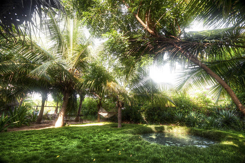 25 місць ідеальних для того, щоб полежати в гамаку (Таміл Наду, Індія. )