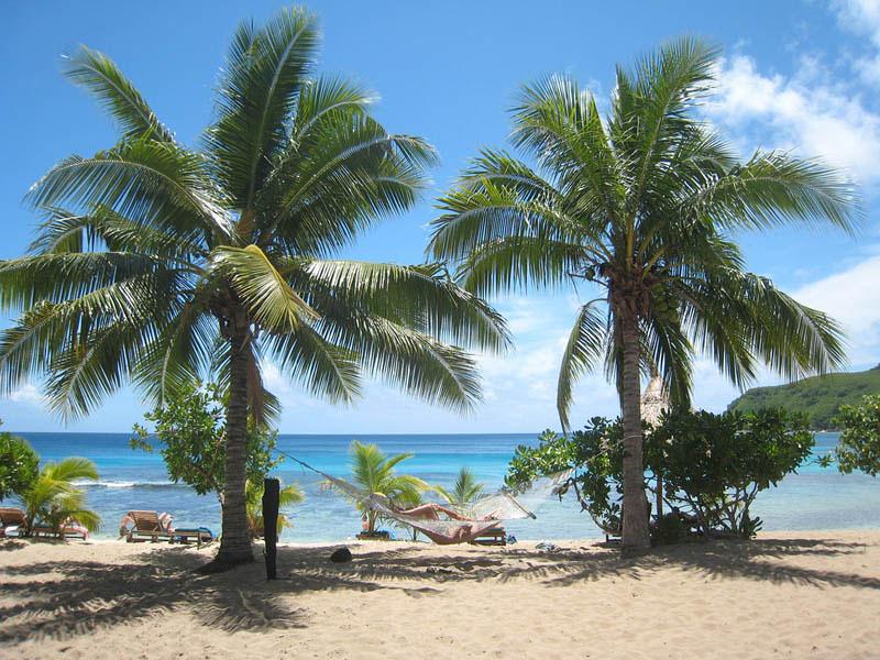 25 місць ідеальних для того, щоб полежати в гамаку (Уестер, Фіджі.)