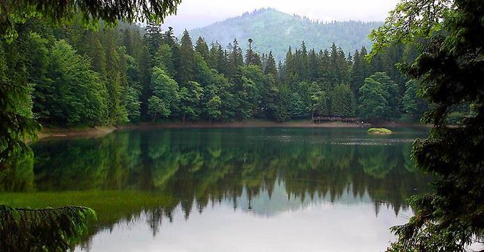 Озеро Синевір - гірське озеро в Карпатах на висоті 989 метрів над рівнем моря, Україна