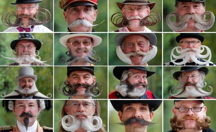 Вуса і борода - головне чоловіче достоїнство. Бородані на чемпіонаті у Франції (6)