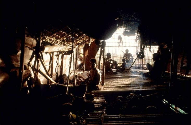 Плем'я Короваї та будинки на деревах в Папуа (6)