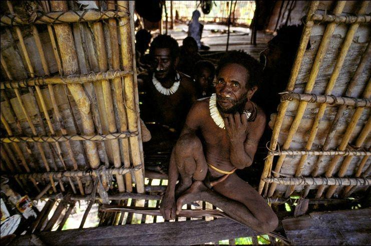 Плем'я Короваї та будинки на деревах в Папуа (7)