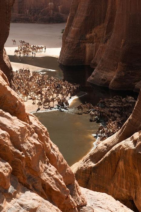 Справжнє диво природи: гірське плато Еннеді в серці пустелі Сахара (6)