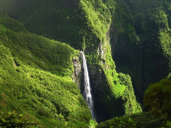 Природна симфонія: ліси і водоспади каньйону Тру де Фер (4)