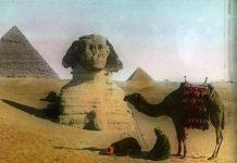 Єгипет початку XX століття у фотографіях