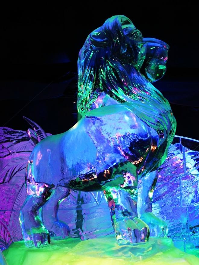 Вражаючі крижані скульптури (5)