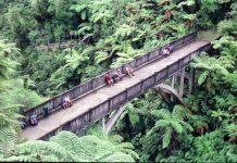 Міст в нікуди. Найбільш ізольований міст у світі (1)