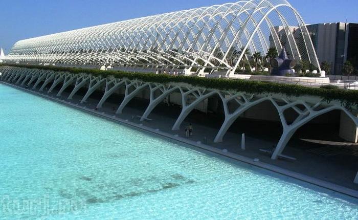 Місто науки і мистецтва - там, де шуміла річка ... Іспанія, Валенсія (14)