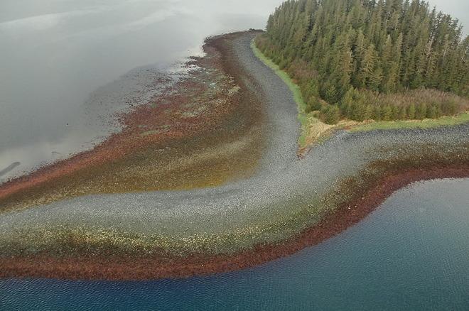 Острів в протоці Принца Вільгельма на Алясці.