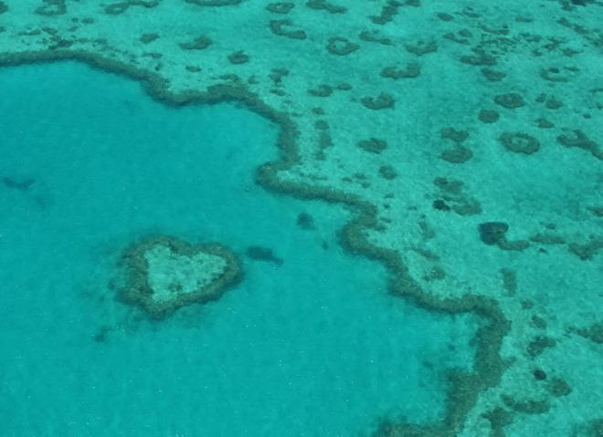 Риф на узбережжі Квінсленда, Австралія.