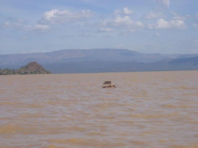 Озеро Рудольф. Найбільше у світі озеро посеред пустелі. (10)