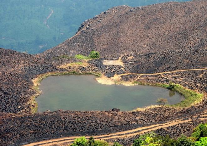 Озеро по дорозі до піку Chembra, Керала, Індія.