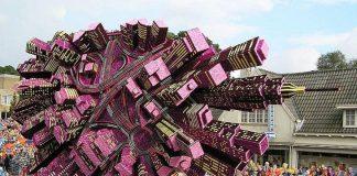 Грандіозний парад з квітів у Голландії (9)