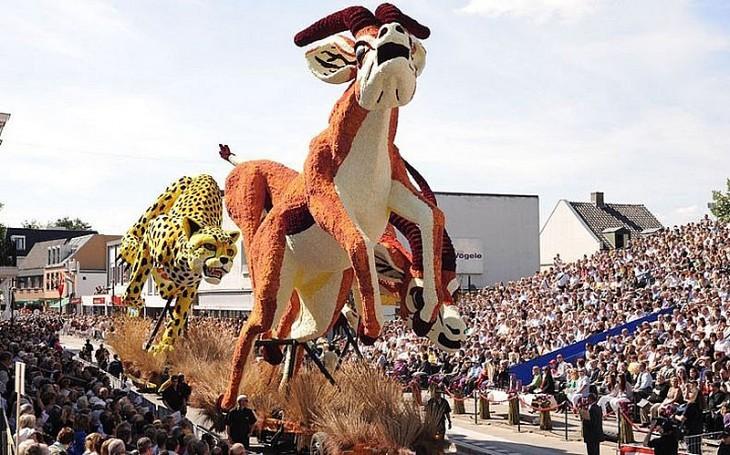 Грандіозний парад з квітів у Голландії (5)