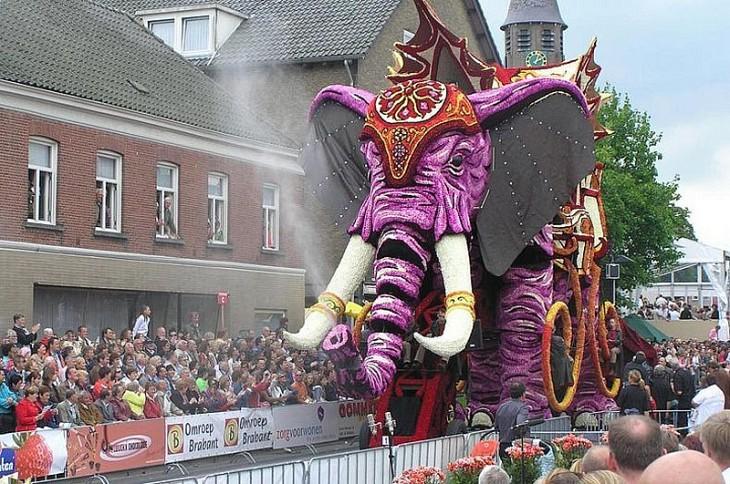 Грандіозний парад з квітів у Голландії (1)