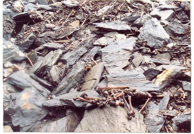 Озеро скелетів: шокуюча знахідка в індійських горах (6)