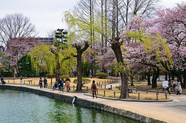 Неповторна архітектура середньовічного замку Мацумото, Япония (11)