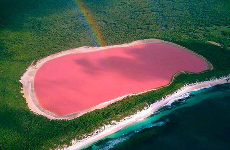 Рожеве озеро Хіллер (1)