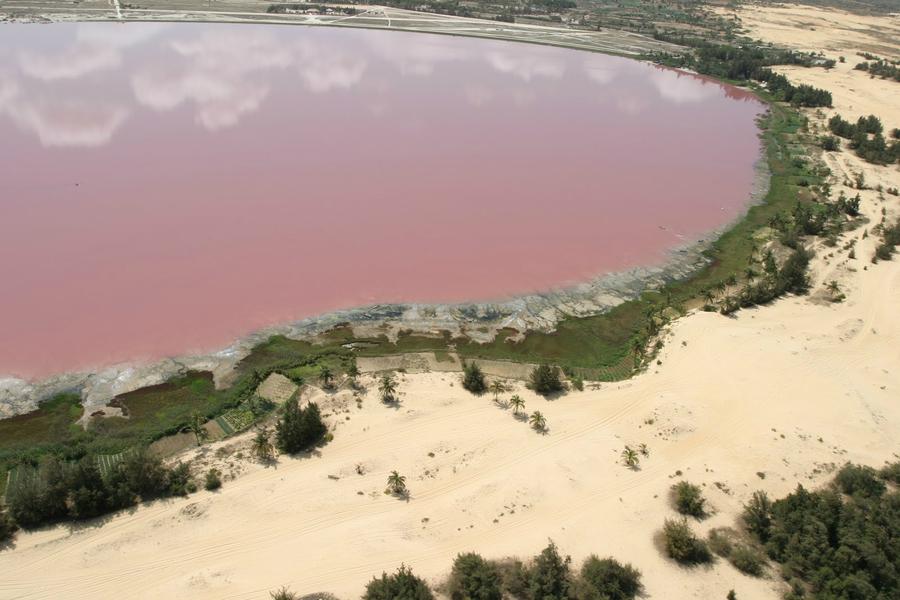 Рожеве озеро Хіллер (4)