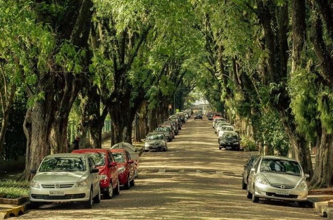 Найзеленіша вулиця світу - Руа-Гонсалу-де-Карвальо в Бразилії (6)