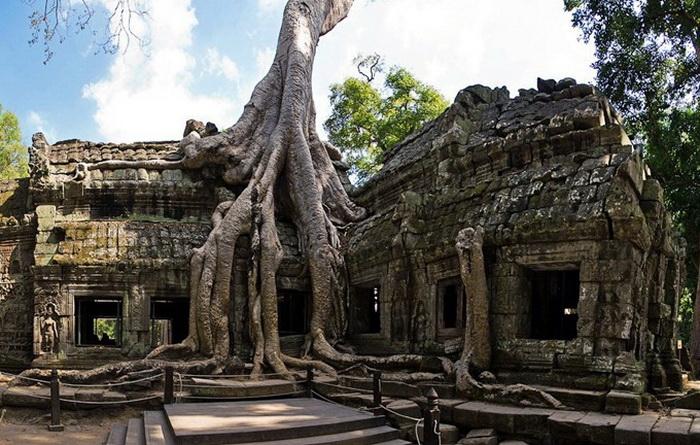 Симбіоз лісу і творіння людини: монастирський комплекс Та-Прохм (1)