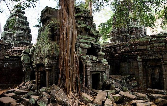 Симбіоз лісу і творіння людини: монастирський комплекс Та-Прохм (2)