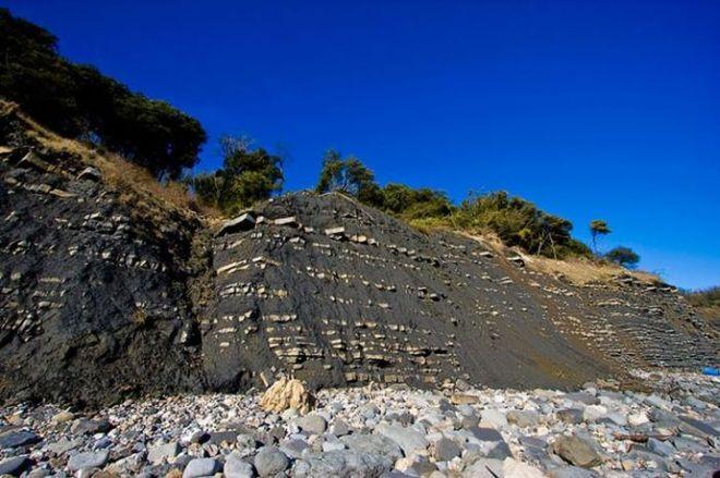 Лайм Реджіс - Пляж Юрського періоду