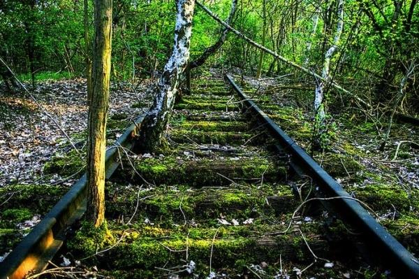 Як містично виглядають занедбані залізниці