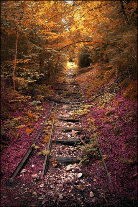 Красива покинута залізниця у Lebanon, штат Міссурі, США