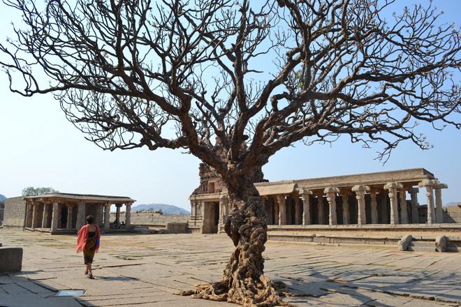 Руїни стародавнього міста Віджаянагара, Індія (14)