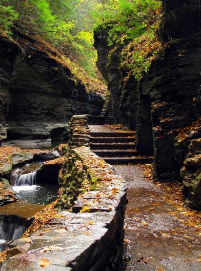 ущелина та водоспади, державний парк Уоткінс Глен (Watkins Glen State Park) (6)