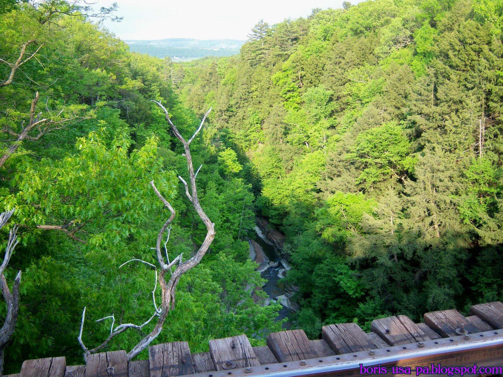 ущелина та водоспади, державний парк Уоткінс Глен (Watkins Glen State Park) (18)