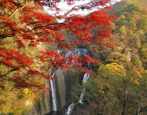 Водоспад Фукурода, Японія (4)