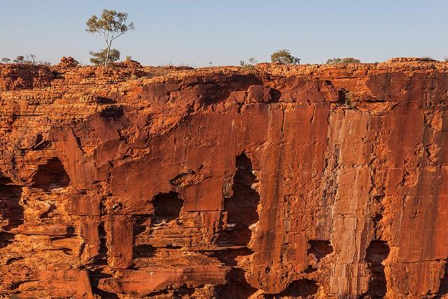 Королівський Каньйон, Австралія (5)
