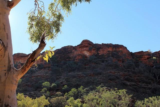 Королівський Каньйон, Австралія (8)