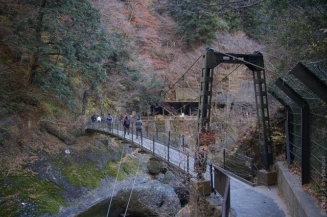 Водоспад Фукурода, Японія (11)