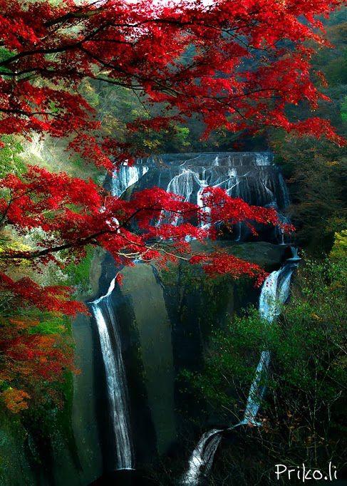 Водоспад Фукурода, Японія (6)