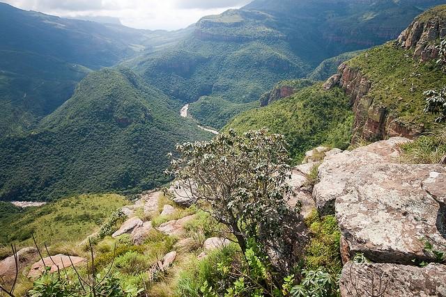 Каньйон річки Блайд (Blyde River Canyon) (18)