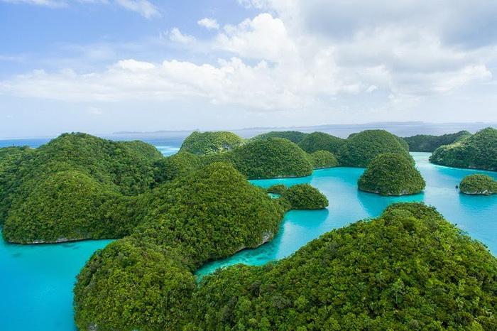 Острови Палау, справжній тропічний рай на Землі (6)