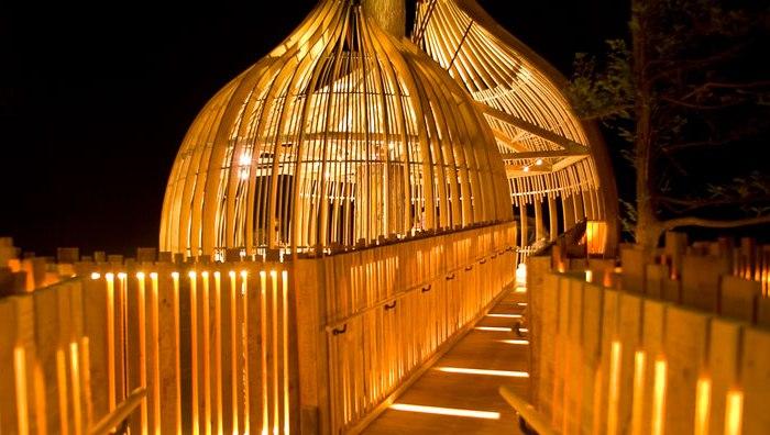 Романтичний ресторан на дереві Yellow Tree House, унікальний ресторан від PEA (1)