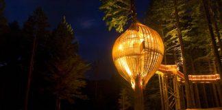 Романтичний ресторан на дереві Yellow Tree House, унікальний ресторан від PEA (2)