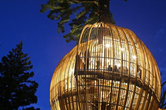 Романтичний ресторан на дереві Yellow Tree House, унікальний ресторан від PEA (10)